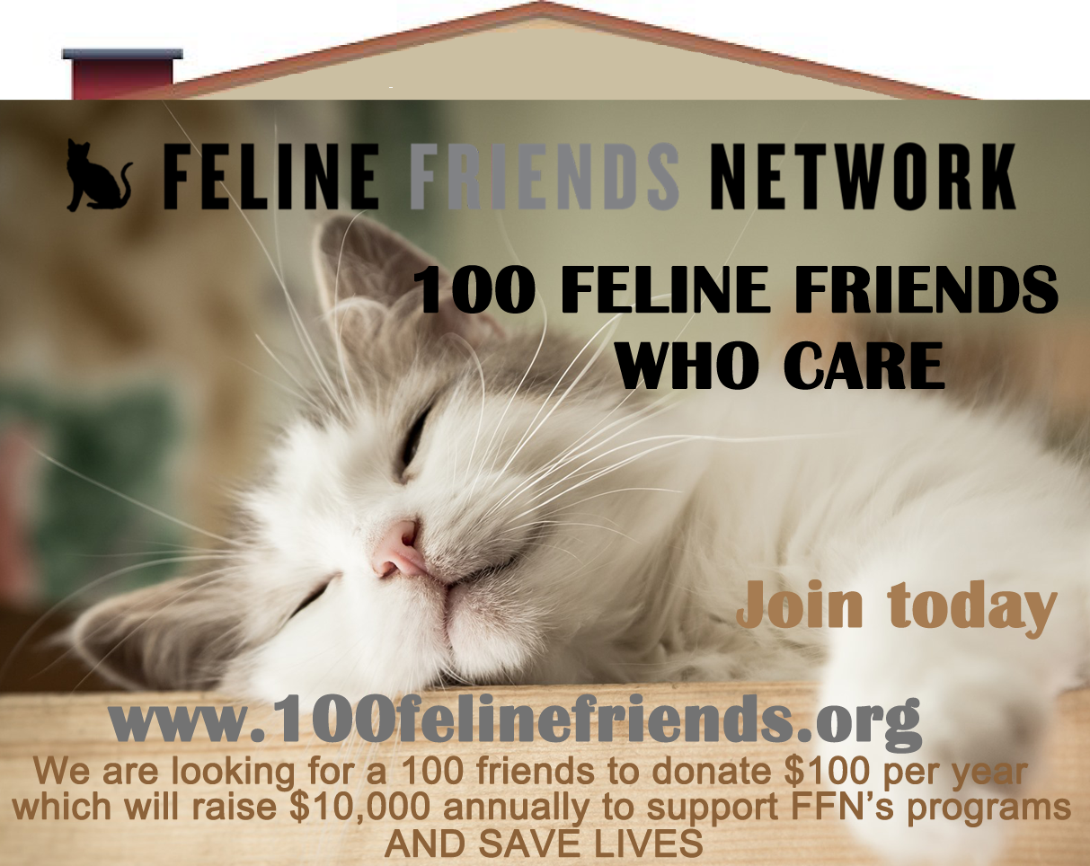 Launch of 100 Feline Friends Who Care