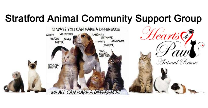 Stratford Animal Community Support Group