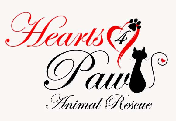 Hearts4Paws Animal Rescue and Support