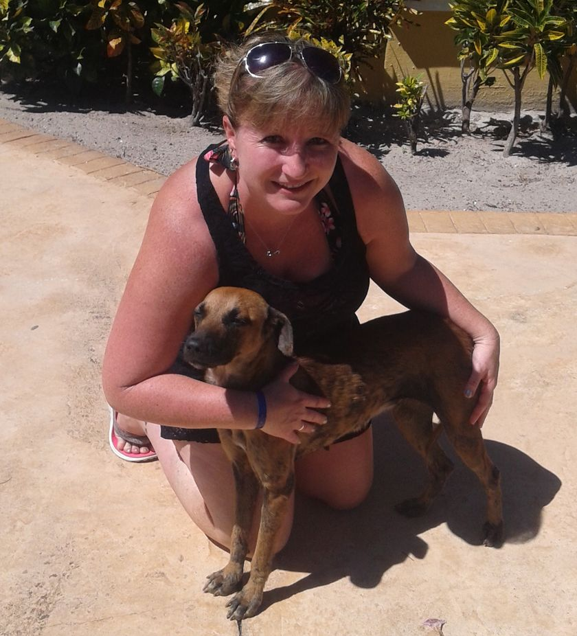 Unbreakable bond leads Stratford woman to rescue stray dog from Cuba